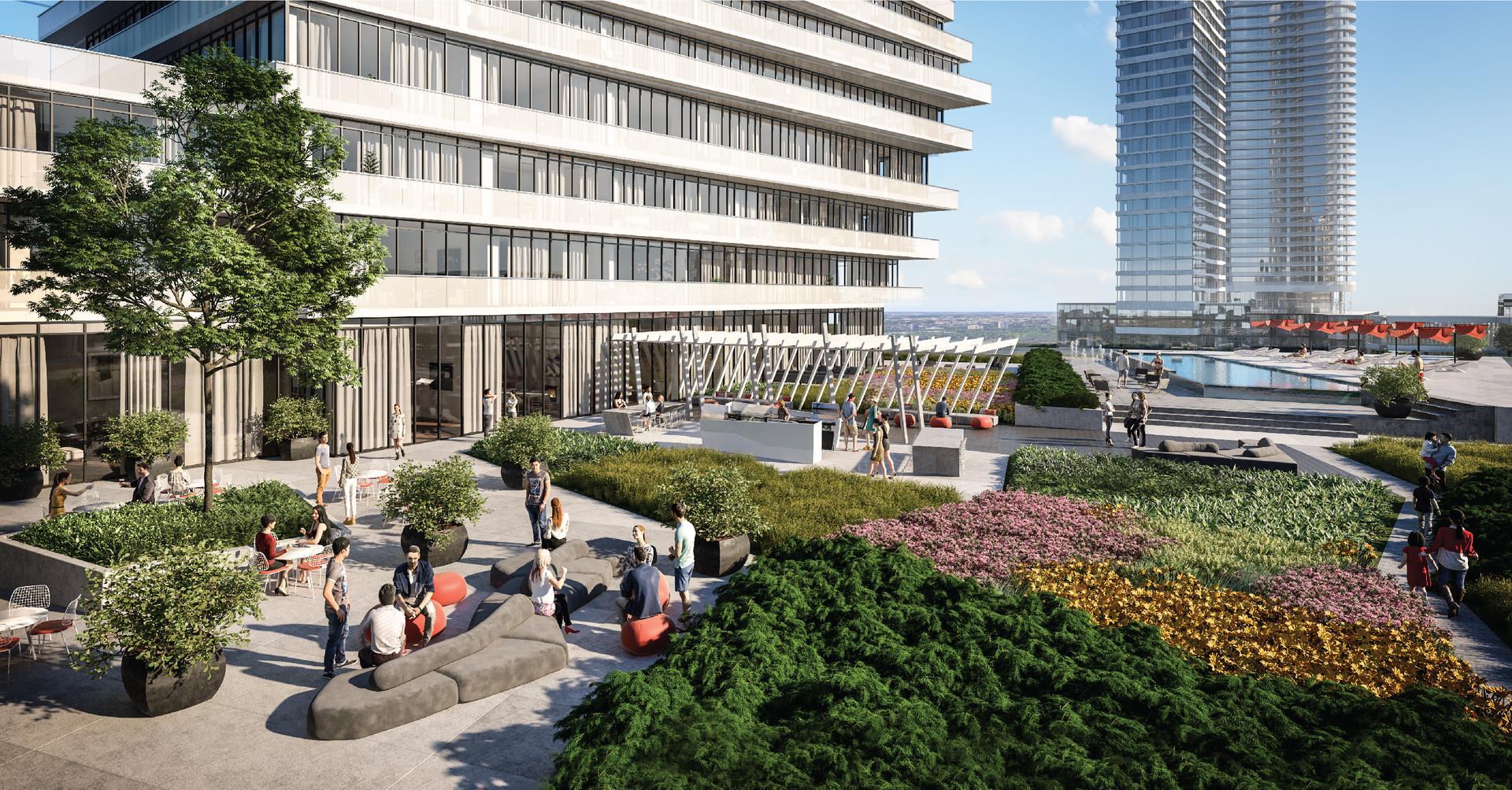 M City Condos - project
